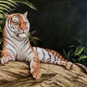 Bengal tiger Amiran art print