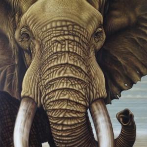 Elephant bull vertical art print
