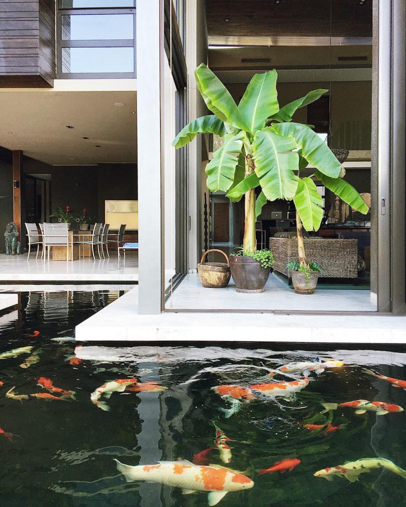 Hout Bay Interior Decor Fish pond