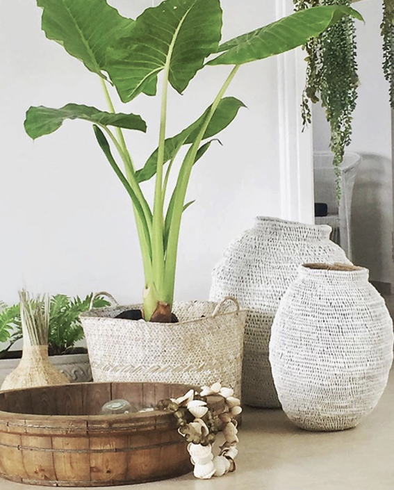 Penthouse wicker planter and baskets